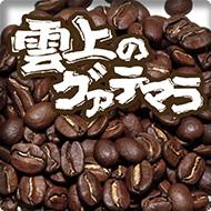 炭火焙煎コーヒー豆『雲上のグァテマラ』